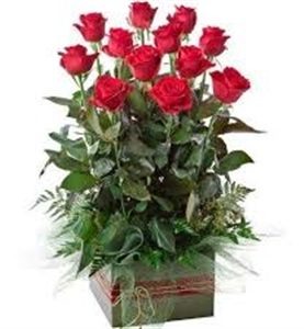 12 Red Long Stem Roses with Greenery