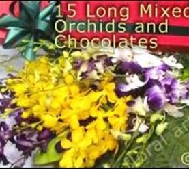 15 Long Mixed Orchids with Chocolates