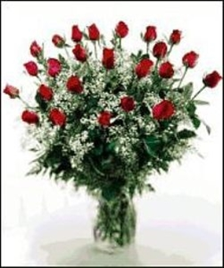 20 Rose Special in Red