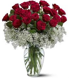 40 Long Stem Red Roses with Gyp (Glass Vase Included)