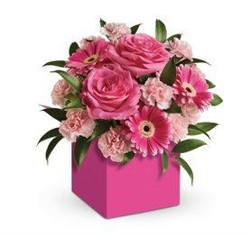 Cute 'n' Pink