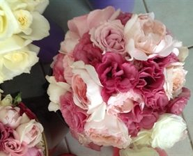 Maid #2 Peonies in 2-Tone Pink