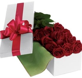 The ideal rose box of 24 reds