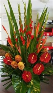 Tropical Arrangement One