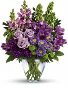 Violetta 1.